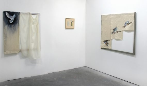 Gallery 8, photo Annie Le Santo